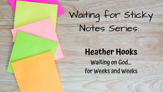 WfSNSeries_HeatherHooks